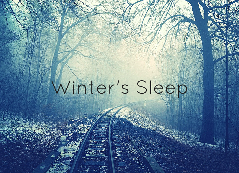 winters-sleep-3